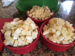 I would eat apples everyday if they were chopped like this.